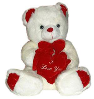 Hug Me , Love Me Teddy